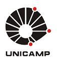 logo_unicamp (1)